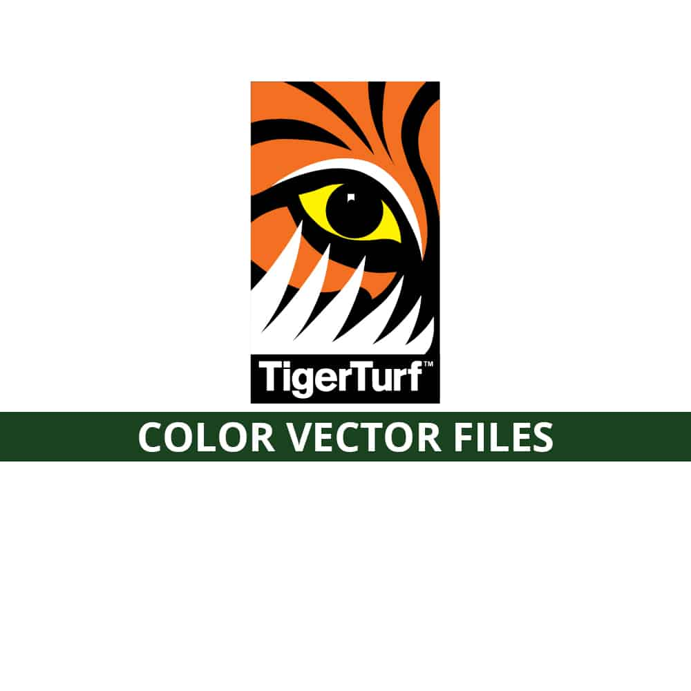 Tiger Color Vector Files
