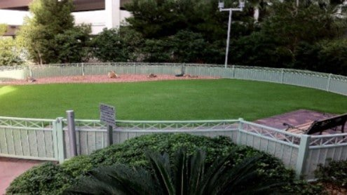 Turf Tips For Cold Weather Installations Synthetic Grass