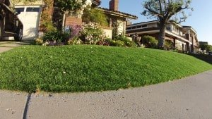 Featured product: Everlast Turf Plush synthetic grass installed for a front lawn.